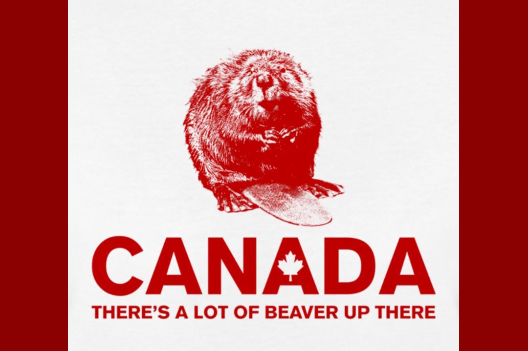 Turns Out That I Am A Beaver. Are You?
